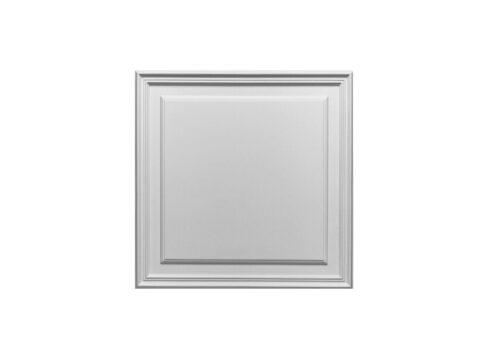 Raised-Panel-3-D503