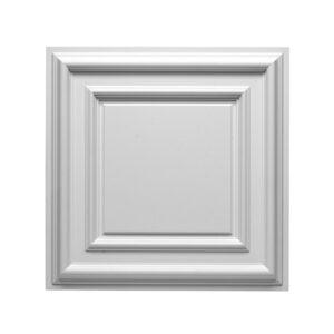 Raised-Panel-6-F30